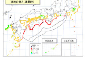 近畿地方大被災ケースでの津波の高さ